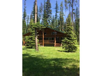 Single Family Home For Sale: 1163 Leaning Pine Ln, Seeley Lake