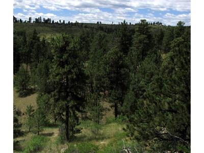 Roundup MT Residential Lots & Land For Sale: $54,900