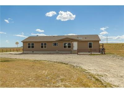 Shepherd Single Family Home For Sale: 1199 Martin Curtis Rd