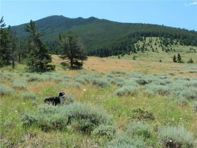 Red Lodge MT Residential Lots & Land For Sale: $299,000