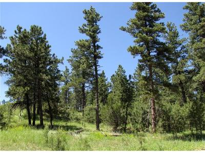 Roundup MT Residential Lots & Land For Sale: $49,500