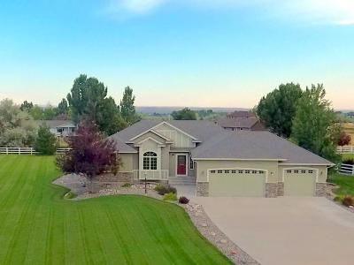 Billings Single Family Home For Sale: 5176 Bridle Creek Trail