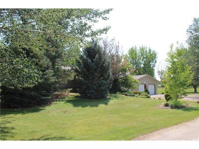 Single Family Home For Sale: 189 Kurt Eben Lane