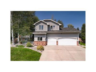 Billings Single Family Home For Sale: 1179 Calico Avenue