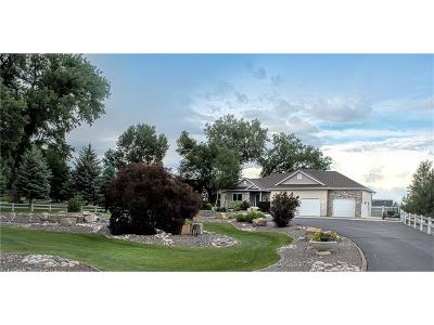 Laurel Single Family Home For Sale: 1045 Golf Course Road
