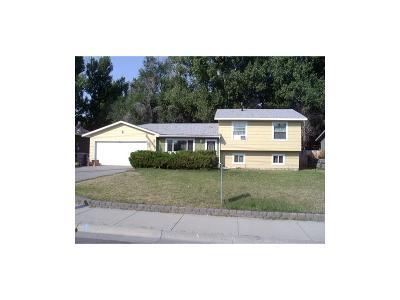 Single Family Home For Sale: 460 Alkali Creek Road