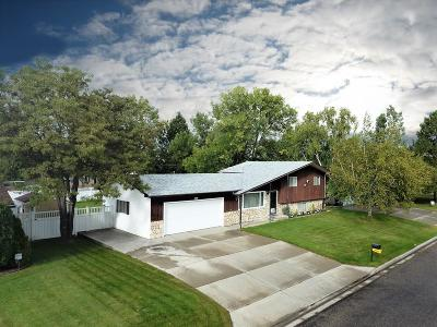 Billings Single Family Home For Sale: 927 Betsy Drive