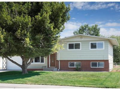 Billings Single Family Home For Sale: 319 29th Street West