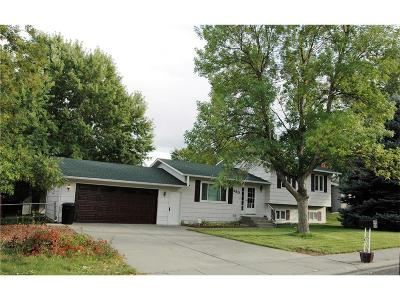 Billings Single Family Home For Sale: 480 Declaration Avenue