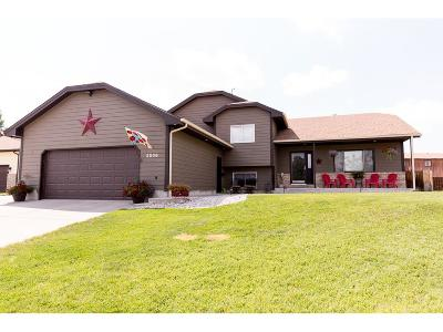 Single Family Home For Sale: 2536 Constellation Trail