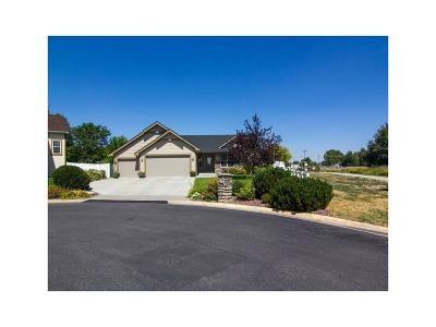 Billings Single Family Home For Sale: 4105 Rangeview Drive