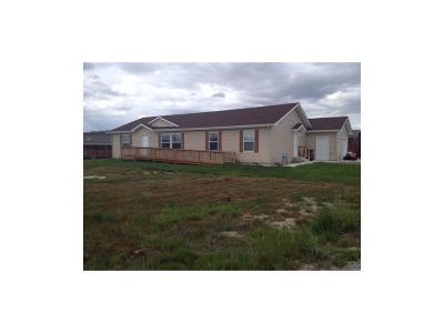 Columbus Single Family Home Contingency: 1021 Horseshoe Creek Creek