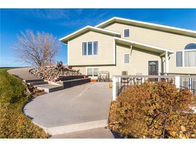 Single Family Home For Sale: 1246 Chipper Lane