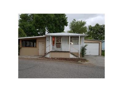 Single Family Home For Sale: 28 Goldust Drive