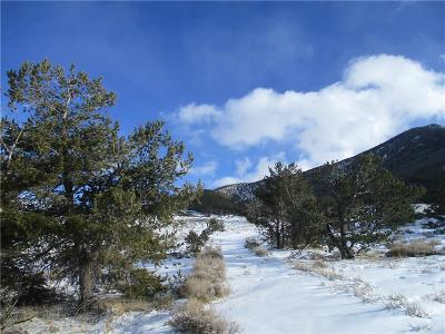 Red Lodge Residential Lots & Land For Sale: 01 Bear Dance Trail