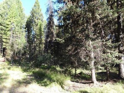 Missoula County Residential Lots & Land For Sale: 427 Glacier Dr, Seeley Lake, Missoula