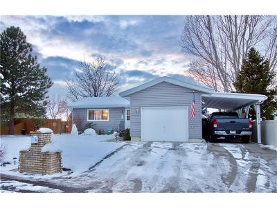 Single Family Home For Sale: 770 Feather