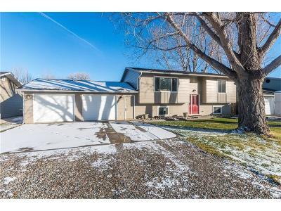 Park City Single Family Home For Sale: 210 5th Street