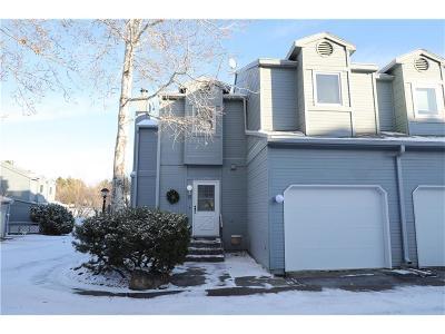 Billings Condo/Townhouse For Sale: 1294 Yellowstone Avenue #1