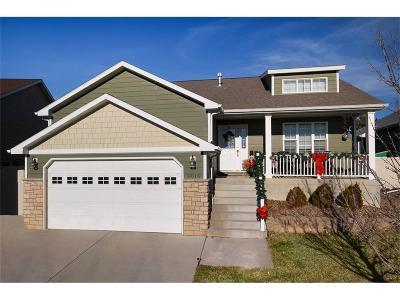 Single Family Home For Sale: 3018 E Copper Ridge Loop