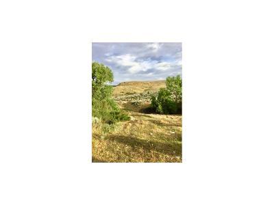 Laurel Farm & Ranch For Sale: 00 Moser Dome