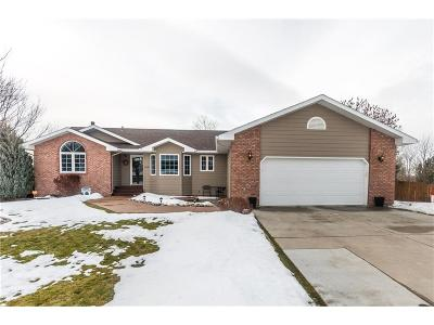 Single Family Home For Sale: 2116 Ridgeview Drive