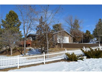 Single Family Home For Sale: 4339 Bowman Dr.