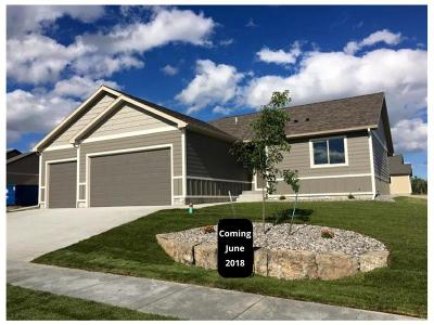 Billings Single Family Home For Sale: 2710 Cornell Circle