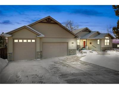 Single Family Home For Sale: 2040 Saddleback Drive