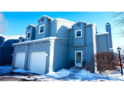 Billings Condo/Townhouse For Sale: 1294 Yellowstone Avenue #4