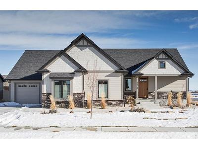 Billings Single Family Home For Sale: 1705 W Thunder Mountain Road
