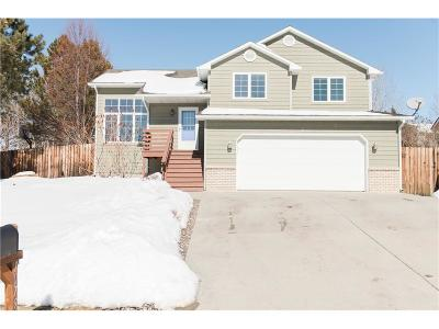 Single Family Home For Sale: 1079 Calico Ave