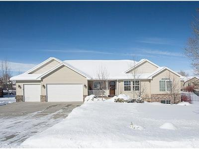 Single Family Home For Sale: 1985 Saddleback Drive