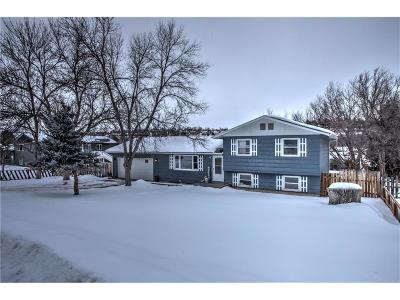 Single Family Home For Sale: 1111 Evergreen Drive