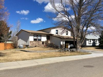 Single Family Home For Sale: 3295 Pipestone Dr.