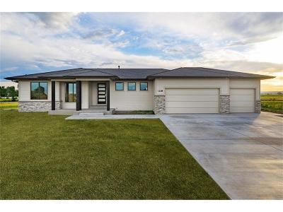 Single Family Home For Sale: 1128 Victoria Falls Circle