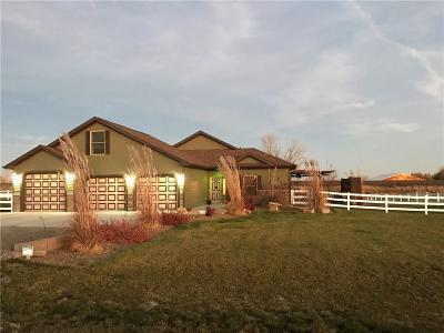 Billings Single Family Home For Sale: 519 Zebra Street