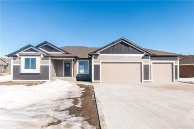 Billings Single Family Home For Sale: 4613 Silver Creek Trail