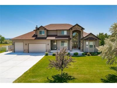 Billings Single Family Home For Sale: 1095 Back Bay Drive