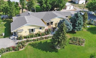 Single Family Home For Sale: 1349 Lake Elmo Drive