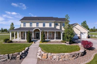 Single Family Home For Sale: 1800 Pheasant Brook Drive