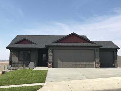Single Family Home For Sale: 2996 W Copper Ridge Loop