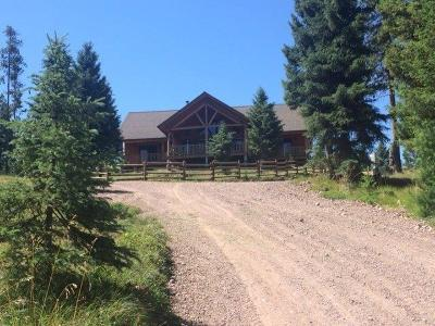 Single Family Home For Sale: 935 Double Arrow Road, Seeley Lake