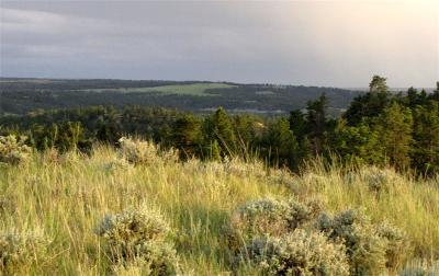 Musselshell County Residential Lots & Land For Sale: Tbd Starlight Drive