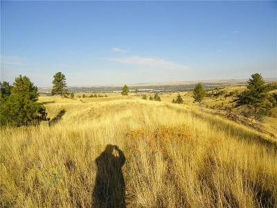 Billings Farm & Ranch For Sale: 3744 Ford Road