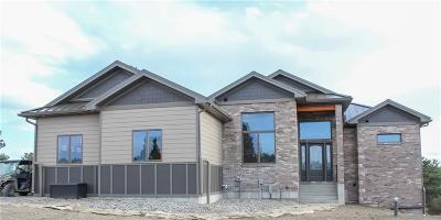 Billings Single Family Home For Sale: 2701 Eagle Eye Ridge