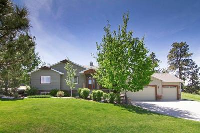 Billings Single Family Home For Sale: 3160 Cabin Creek Trail