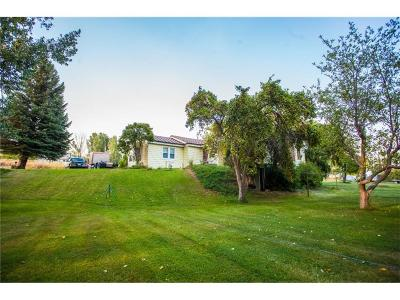 Billings Single Family Home For Sale: 17061 Independent