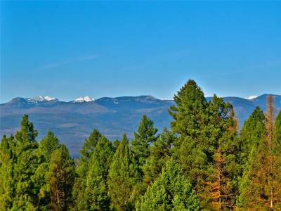 Missoula County Residential Lots & Land For Sale: 431 Grandview Drive, Seeley Lake