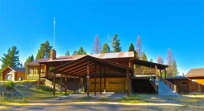 Single Family Home For Sale: 387 Grandview Drive, Seeley Lake